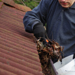 Man cleaning dirty gutter from moss and leaves. Building with unclean tile roof after winter. Spring cleaning. (Man cleaning dirty gutter from moss and leaves. Building with unclean tile roof after winter. Spring cleaning., ASCII, 111 components, 111